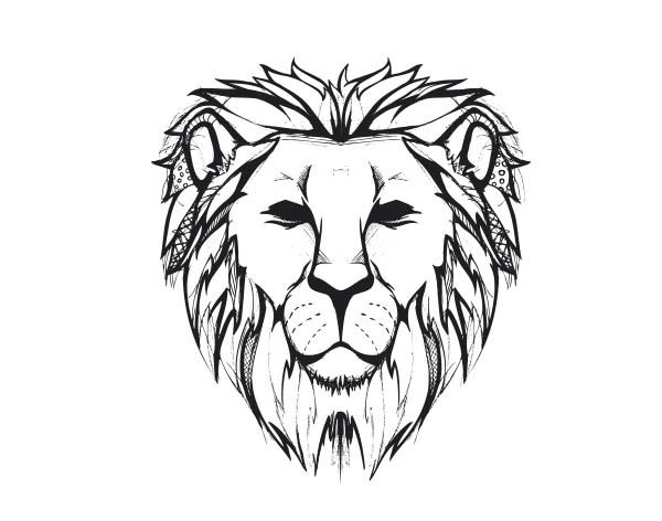 Great Reference For The Lines Of A Lion