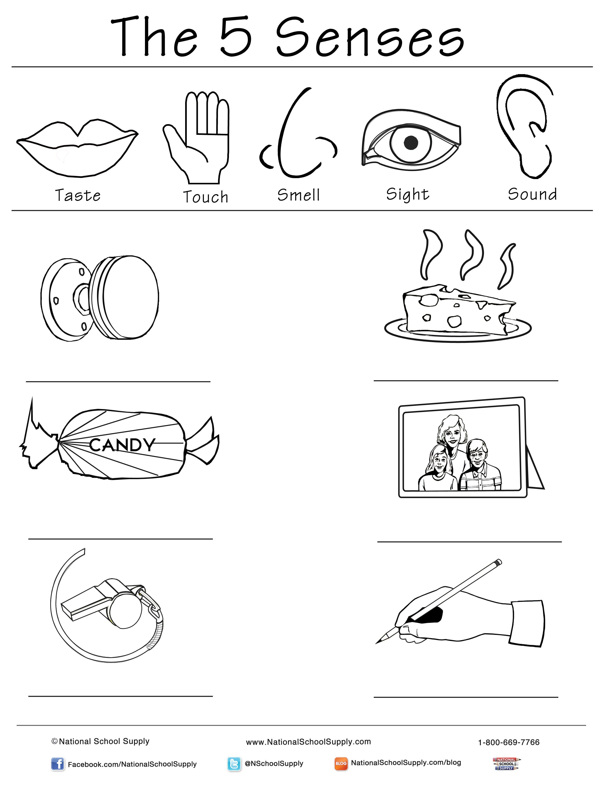 New 5 Senses Printable Is Great For Classrooms Of All
