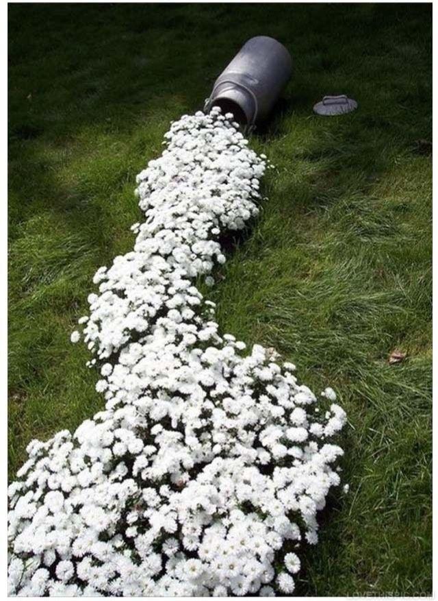 Garden Idea Garden Diy Gardening Diy Crafts Do It Yourself Diy Art