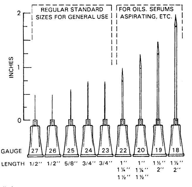 needle gauge sizes - Google Search   Nurse Life ...