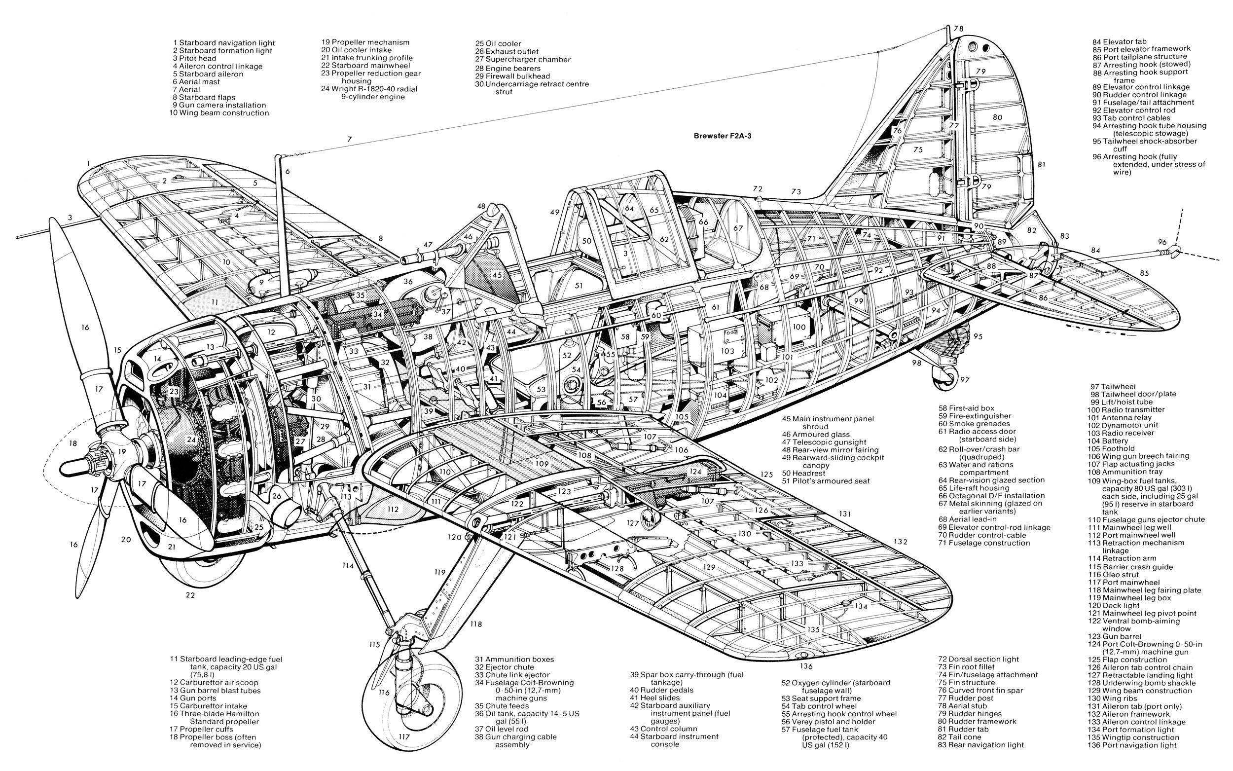 Brewster F2a3 Buffalo Cutaway