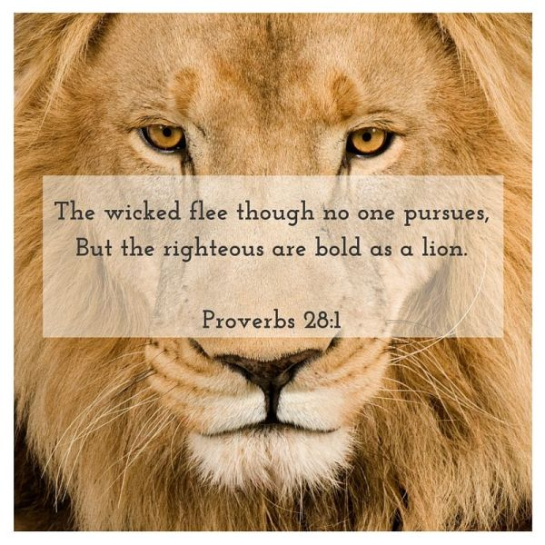 Bold Lion Proverbs 28 1 Inspiredpaintstrokes - Year of Clean