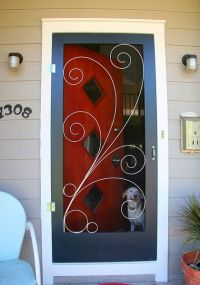 SCREEN DOOR! Crestview Doors - Pictures of modern front ...