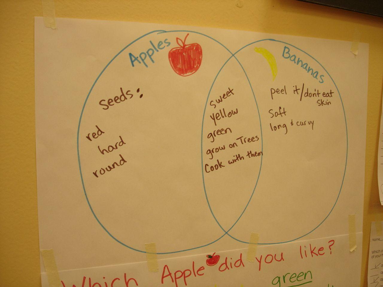 diagram of an apple worksheet cb400 hawk wiring venn comparing apples and bananas great math