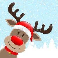images of reindeer faces - Google Search   REINDEER ...