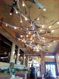 Interesting Driftwood Lighting Fixtures on porch | Dream ...