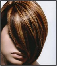 Dark brown lowlights and highlight hair color with side ...