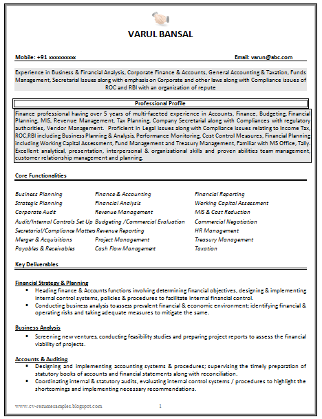 Beautiful Revenue Accounting Resume Contemporary - Office Worker ...