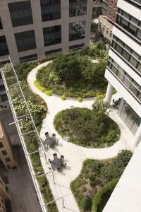 CLARE TOWER ROOF GARDEN | Gardens, Roof gardens and Green ...