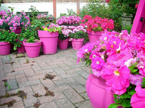 Some More Ideas On How To Arrange Flowers In Outdoor Pots Garden