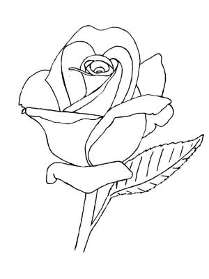 rose line drawing outline lineart drawings deviantart roses coloring pages flower dibujos embroidery patterns tattoo para rosas animals simple bordar