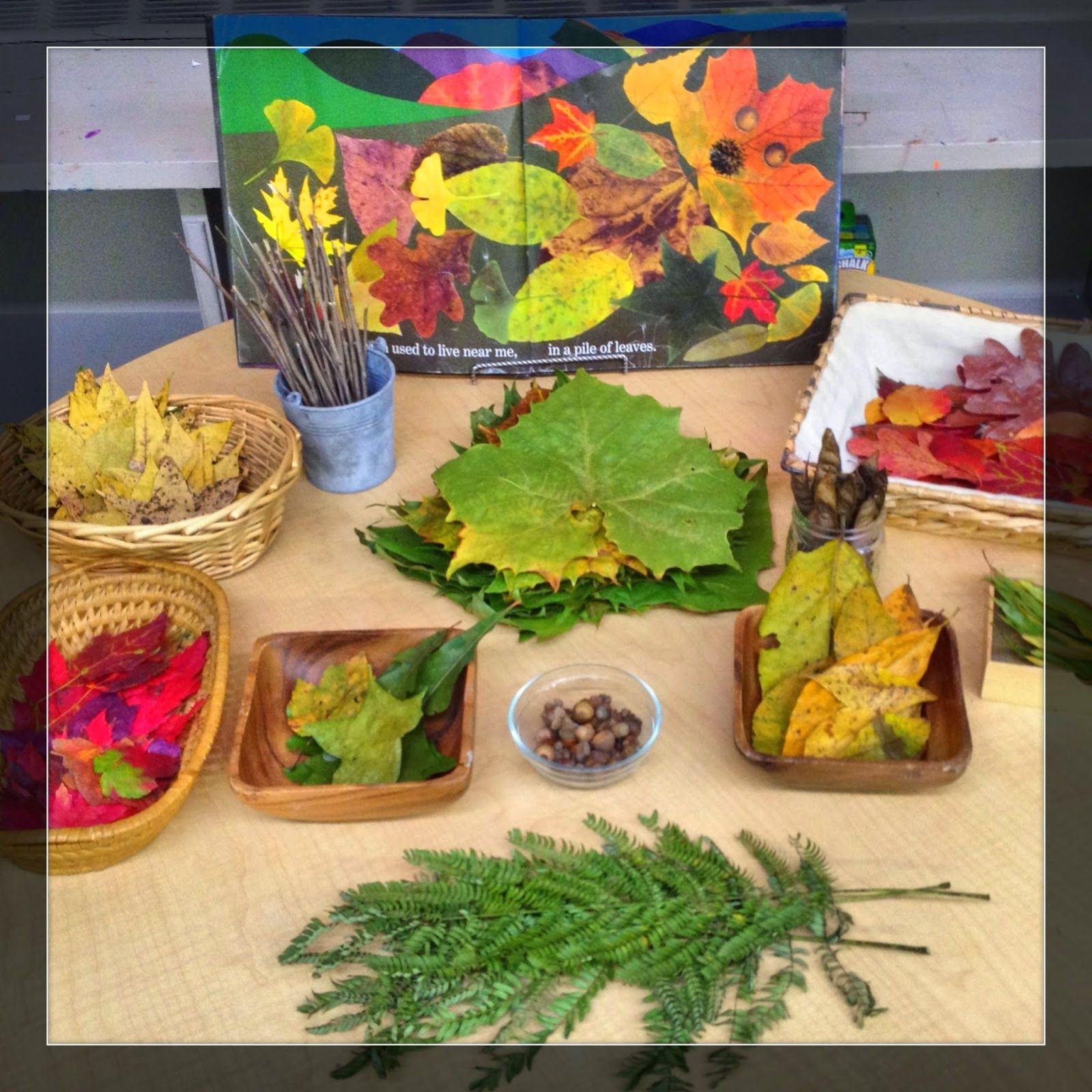 Leaf Man Provocation The Simplicity Of Learning