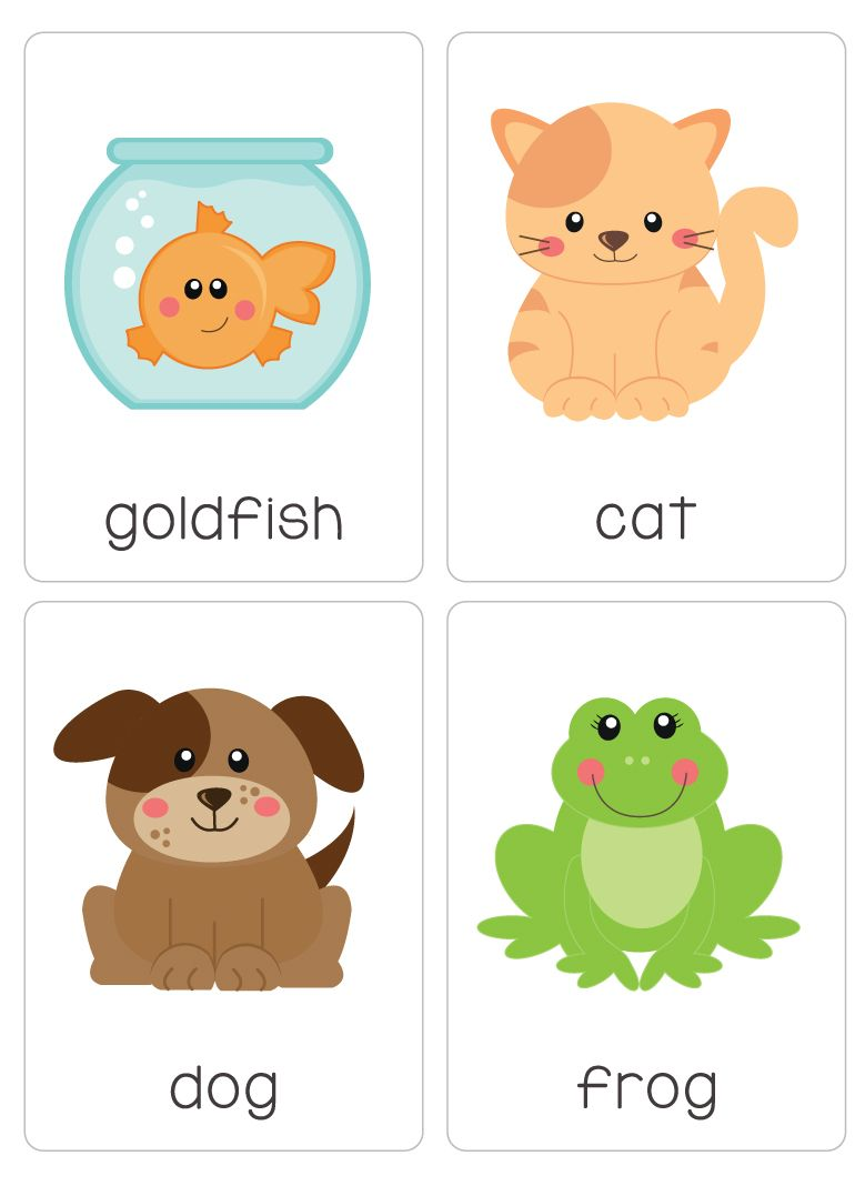 Our Set Of Printable My Pets Flash Cards Are A Great