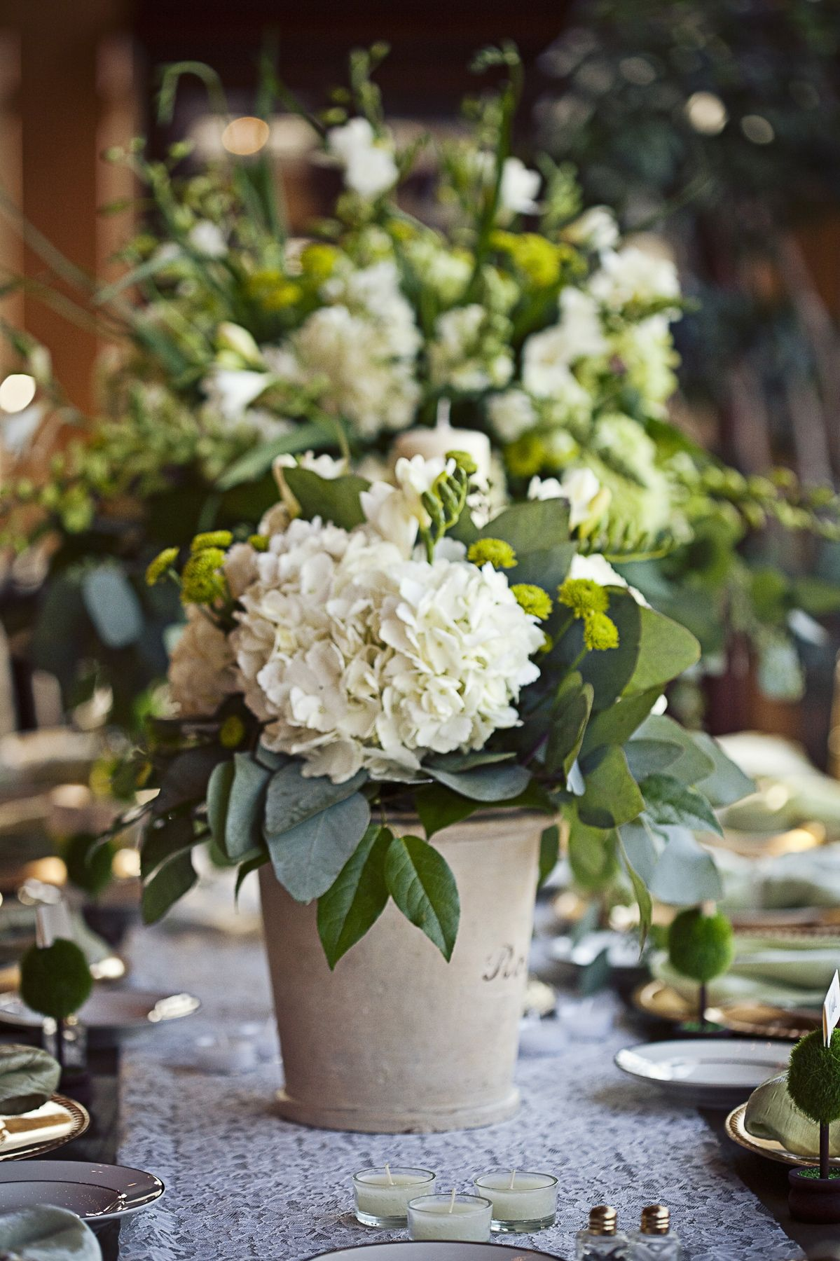 Gorgeous green potted hydrangea centerpiece  Photos by LSD Photography  Farm Weddings