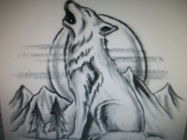 Baby Wolf Howling Drawing Top Online