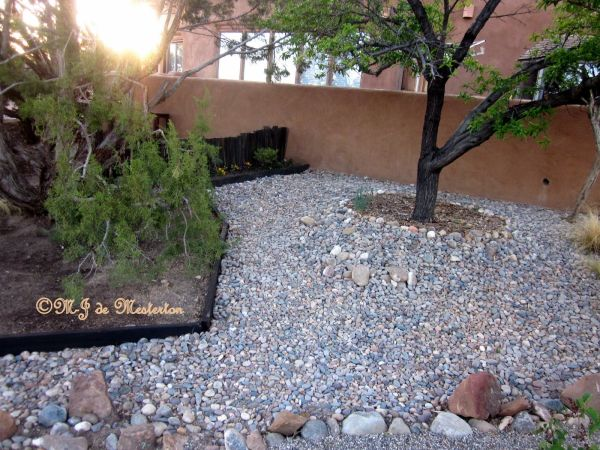 landscaping gardening ideas