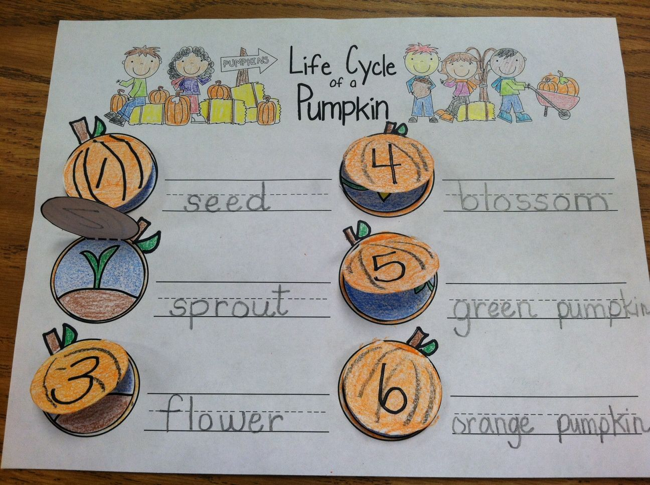 Pumpkin Books With Sequencing