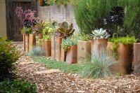 Designing A Succulent Garden | The homeowner describes the ...