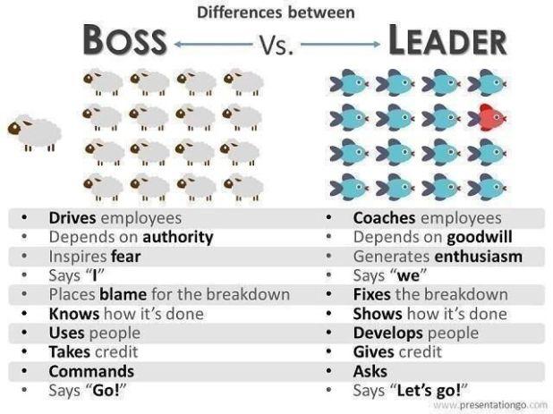 Leadership+Development+Coaching