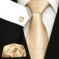 Champagne - Gold Wedding Tie Sets / Necktie sets | Wedding ...