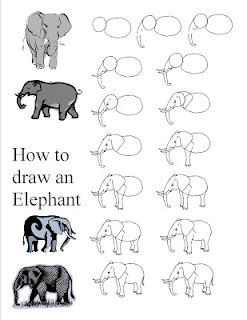 elephant- my kids love these step by step guides for my