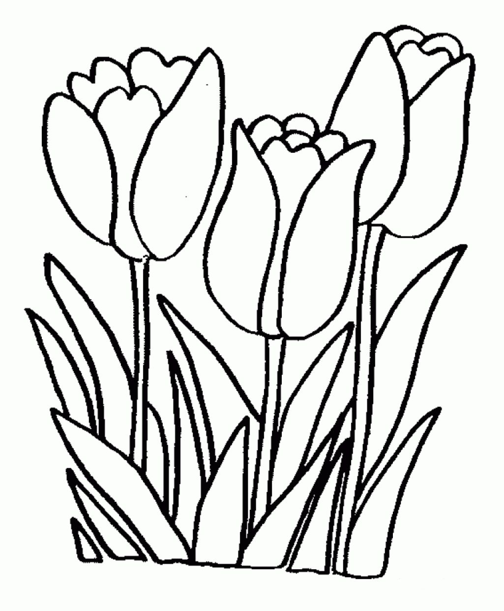 A Single Flower Free Printable Coloring Pages For When