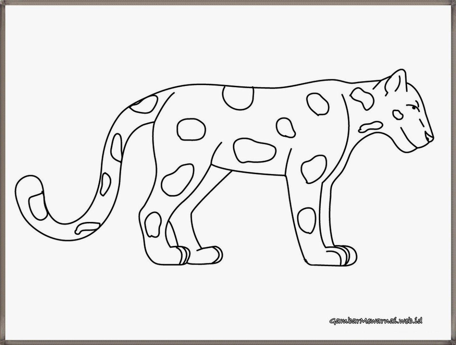 Gambar Bintang Harimau Untuk Mewarnai