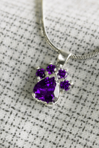 Paw Print Birthstone Sterling Necklace | Birth month ...
