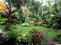 Dennis Hundscheidt's tropical garden, Queensland... superb