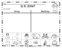Living And Nonliving Things Worksheet. Worksheets