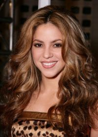 New Hairstyle 2014: Medium Golden Brown Hair Dye Pictures