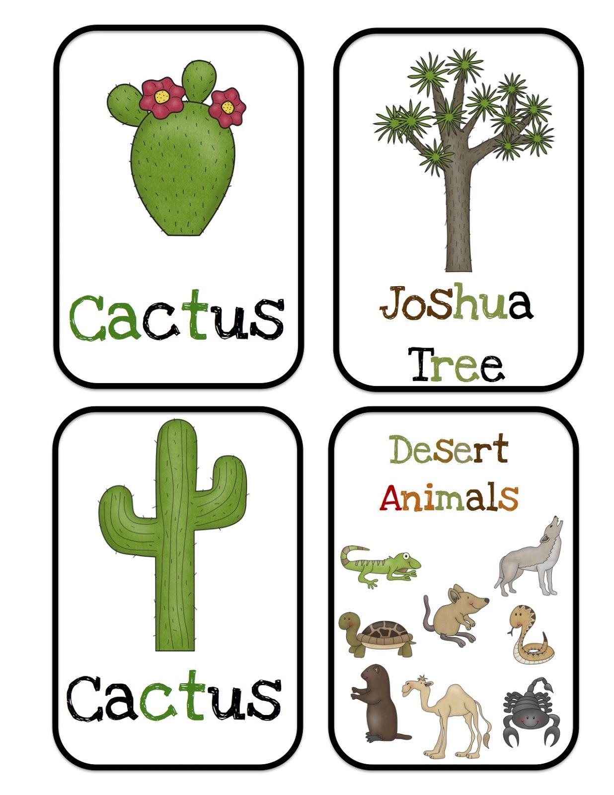 Desert Worksheet Preschool
