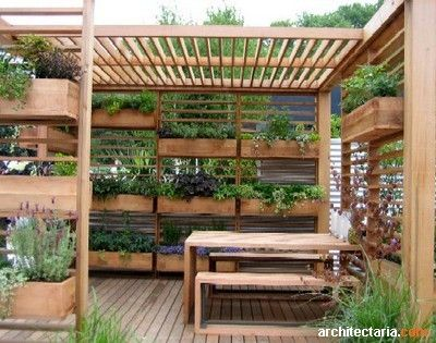Vertical Herb Garden Pergola By FATIMA CACIQUE Deck