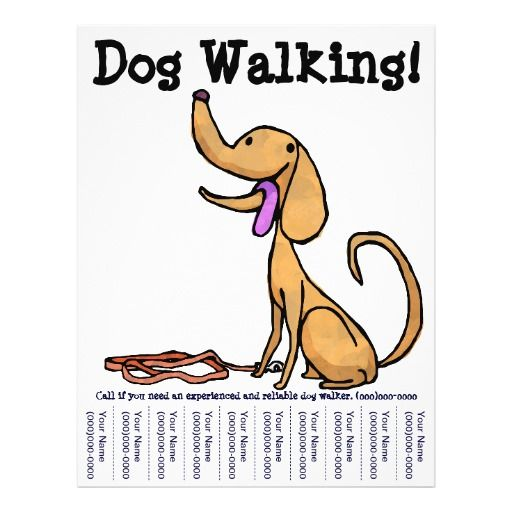 Dog Walking Flyers  Google Search  Dog Walking
