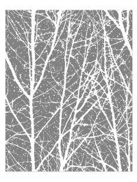 tree wallpaper, tree decal, birch tree wallpaper ...