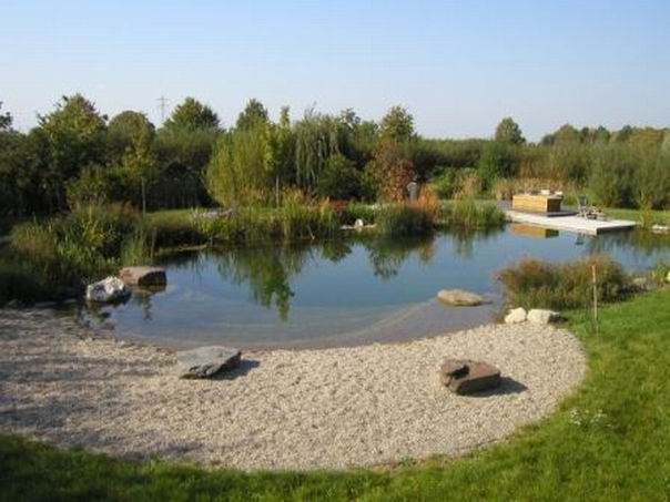 How Keep Farm Pond Clean