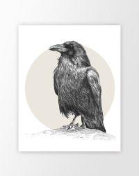 Raven Wall Art Print - Custom Color Raven Bird Pencil ...