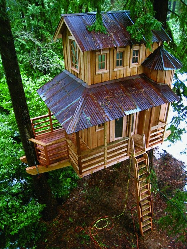 Treehouses You Wish Were In Your Backyard 22 Photos Tree