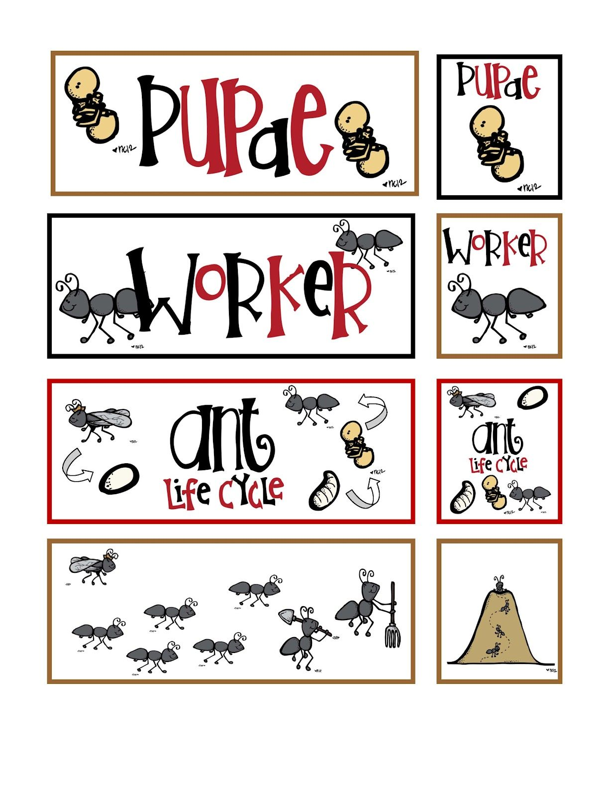 Ant Body Parts Preschool Worksheet