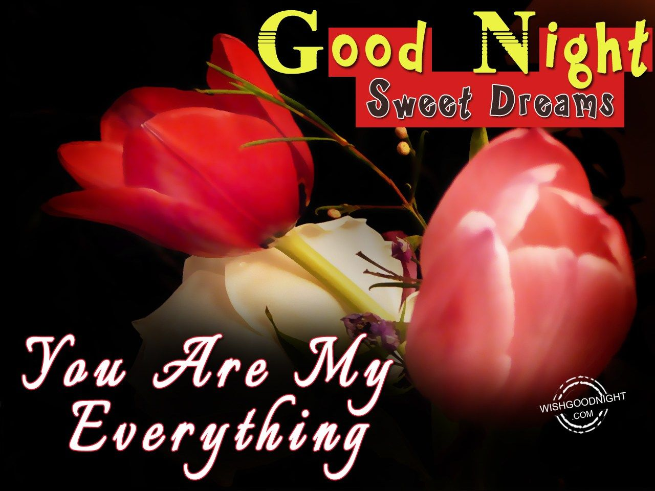 Gud Nite Wallpaper With Quotes Good Night My Love Images Good Night Wishes Quotes