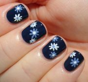 simple blue and white flowers