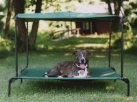 Outdoor Large Dog Bed w Canopy - Raised | Pellos ...