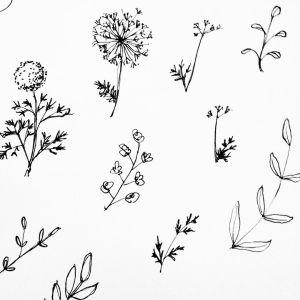 tattoo simple sketches drawing tattoos wildflower flower sketch tree minimalist instagram designs harold maude flowers wild minimalistic trees explore wildflowers