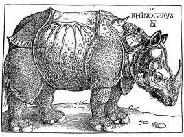 Durer&39;s woodcut rhinoceros rhino   9COREARt   Pinterest ...