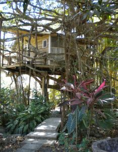 Playa selva tree house lodge mal pais costa rica also rh pinterest