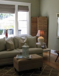 Sage green future paint color for living room also pinterest rh