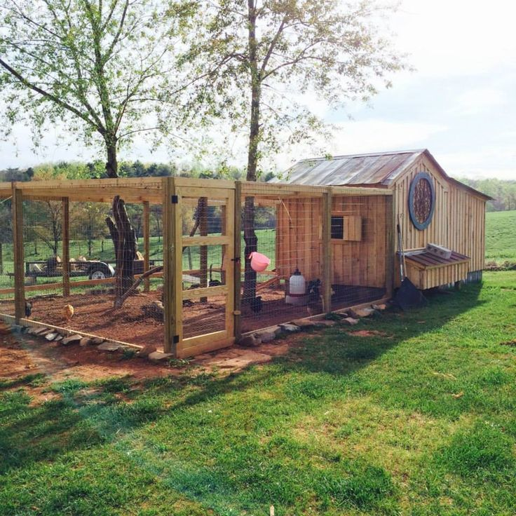 1000 Ideas About Chicken Coops On Pinterest Coops Backyard
