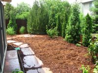 backyard landscaping for privacy | Gunbarrel Colorado ...