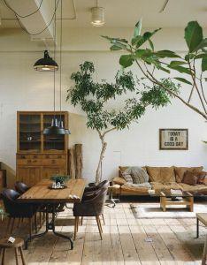 Plants also home design pinterest rh in