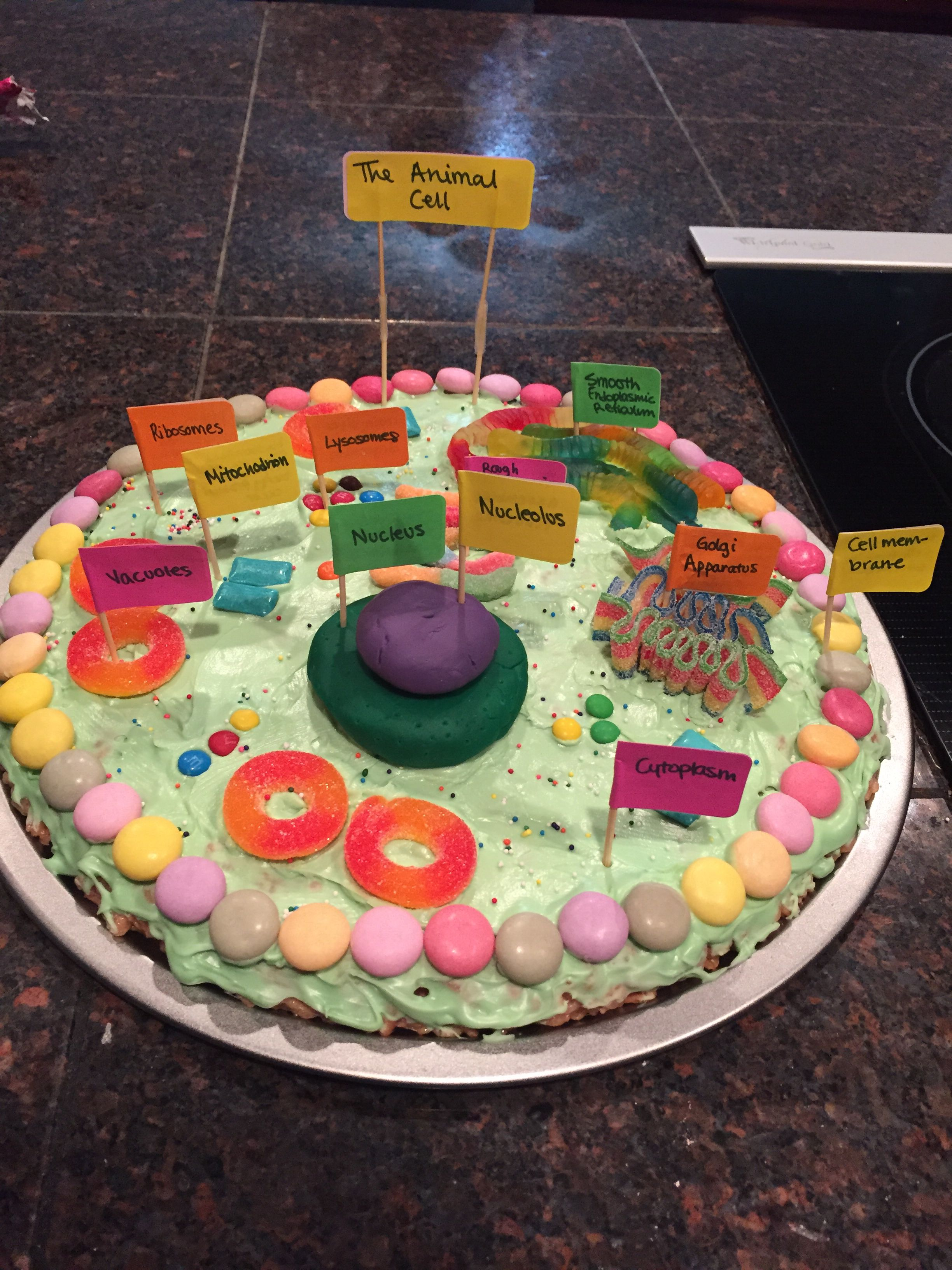 plant cell diagram project hydrosphere lithosphere atmosphere animal edible ideas pinterest